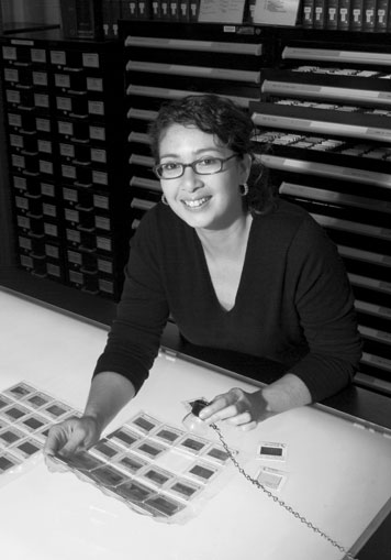 Glaire Anderson, a Ph.D. candidate and an expert on Islamic architecture, is a pioneering contributor to Archnet, an MIT web enterprise that focuses on Islamic art and architecture.