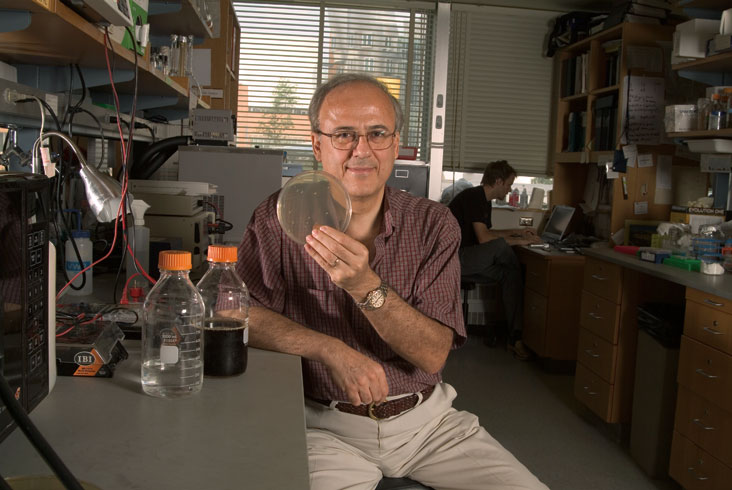 Greg Stephanopoulos' lab work includes efforts to create microbes that can help convert sugars from certain types of plants into ethanol. Photo: Ed Quinn