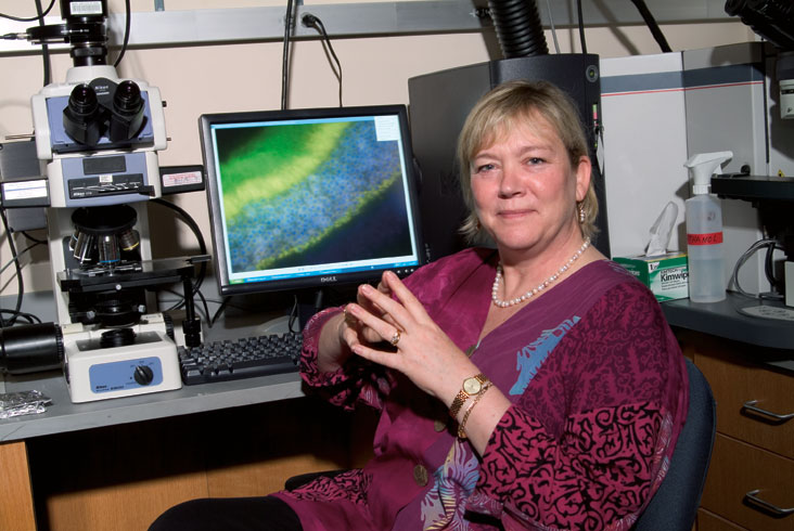 Leona Samson' studies of DNA repair mechanisms promise new strategies for cancer. Photo: Ed Quinn
