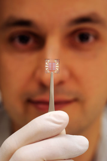 Vladimir Bulovic is shown with an experimental solar cell his group has developed. Photo: Len Rubenstein