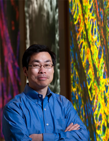 Jianzhu Chen's work may one day lead to a cancer vaccine. Photo: Len Rubenstein