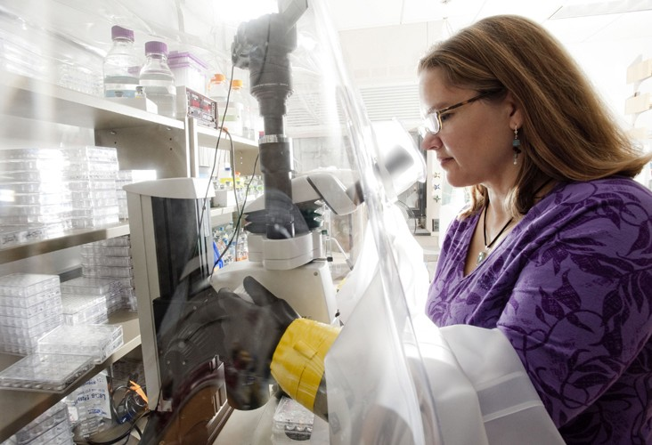 Professor Catherine Drennan (pictured) says that microbes offer a natural way to clean up the waste products of energy production. Photo: Len Rubenstein