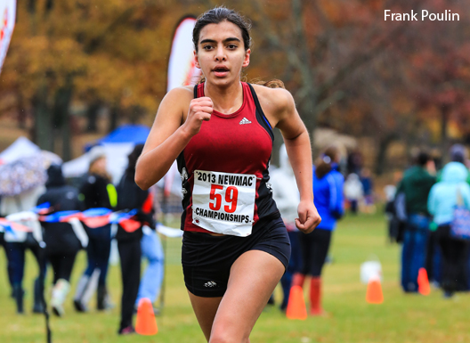 Elaine McVay '15 led the women's cross country team to second-place finish at the 2014 NCAA Division III Cross Country Championships. Image via MIT Athletics.