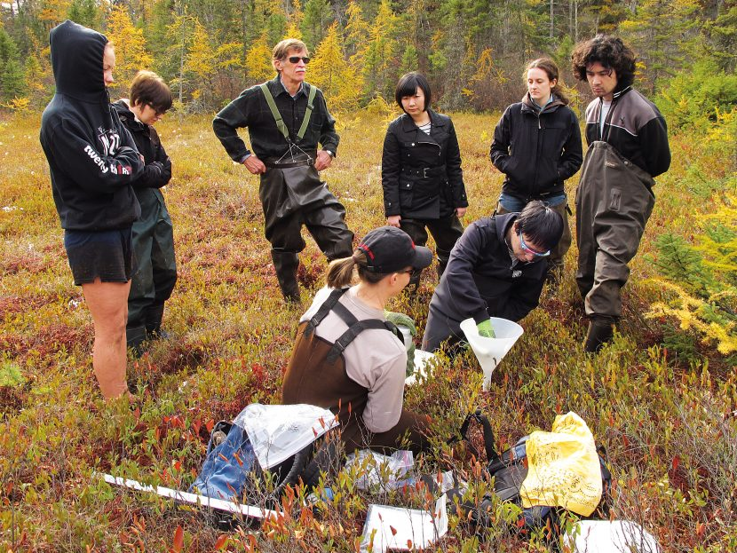 Hemond, third from left, with students, collecting sediment in Thoreau's bog. Photo: Courtesy of the researchers