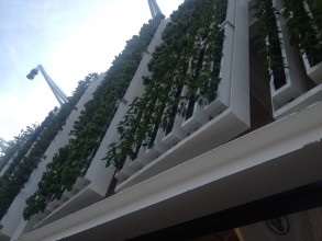 Vertical garden and smart glass terrace at the American Pavilion. Image: Expo 2015